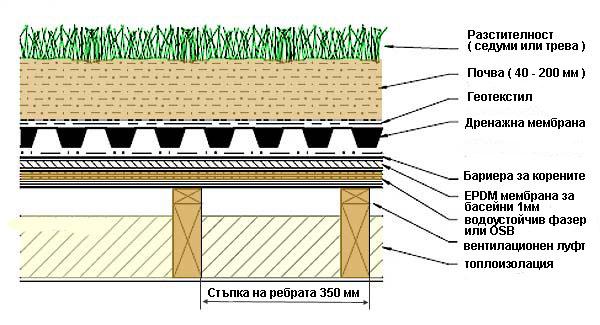 устройство на зелен покрив