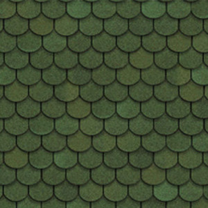 tilercat_ola_green